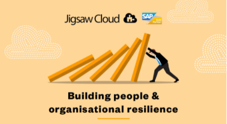 jigsaw-report-building-people-and-organisational-resilience-social